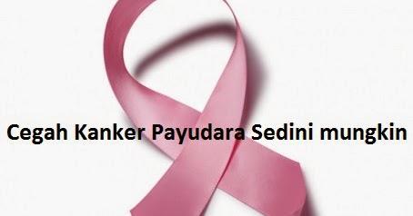 3 Bahan Kimia Penyebab Kanker Payudara yang Perlu Anda ...