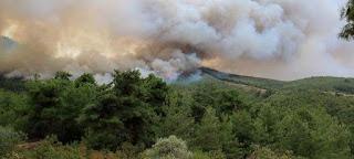 Αναδημοσίευση Δελτίου Τύπου του Πυροσβεστικού Σώματος σχετικά με τις κυριότερες δασικές πυρκαγιές