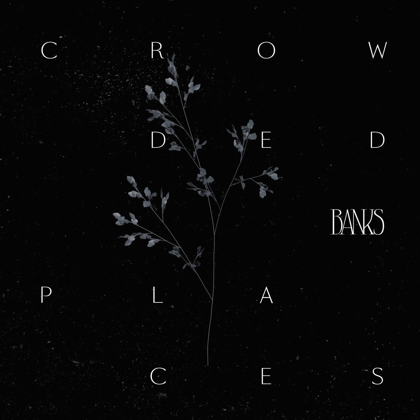 Banks - Crowded Places - Single Cover