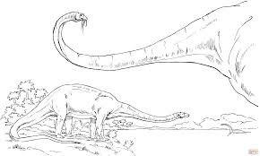 Adorable Diplodocus Dinosaur Coloring Sheet Animal