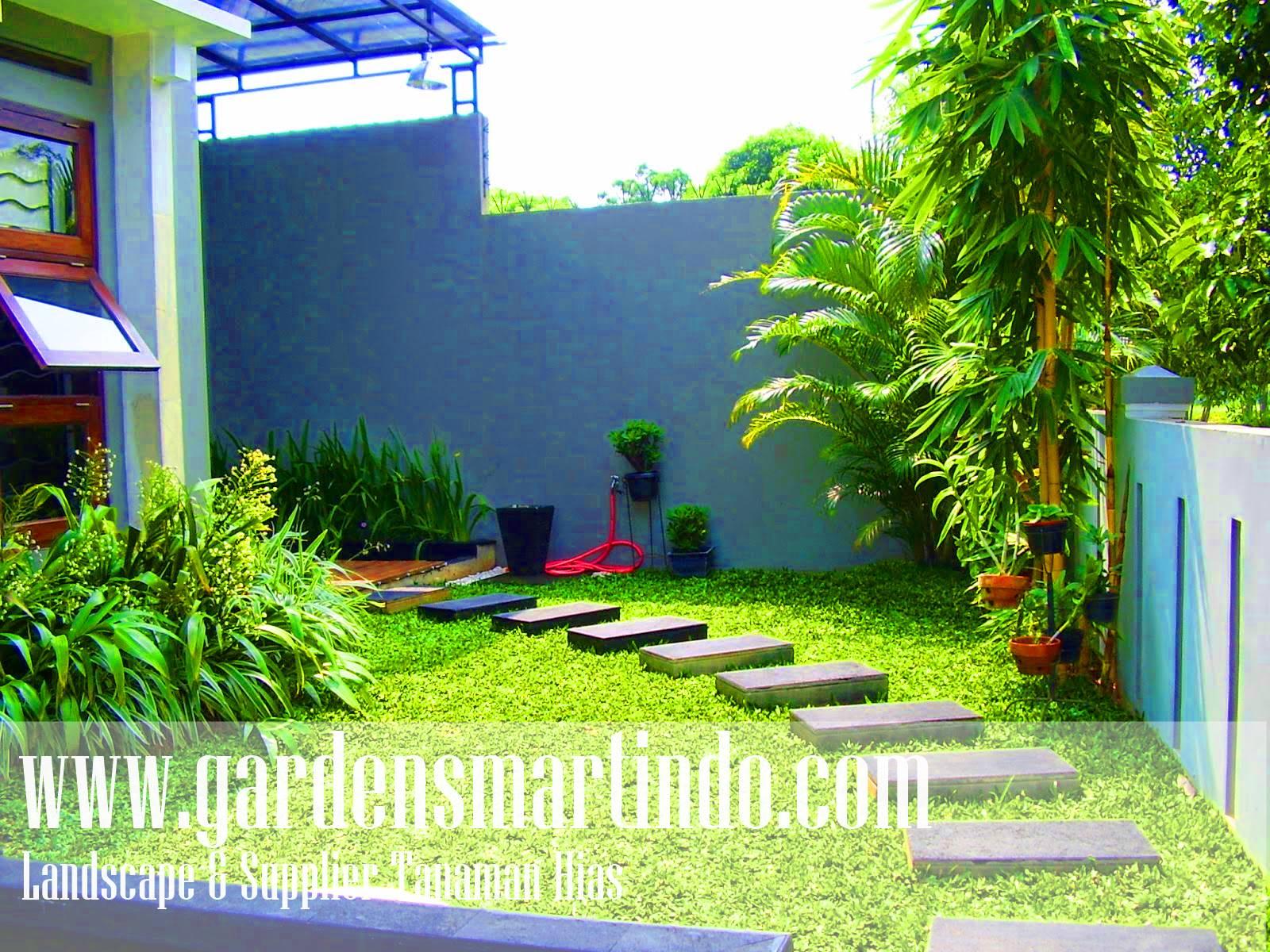 Tukang Taman Surabaya Gardensmartindo Jasa Tukang Taman Jakarta