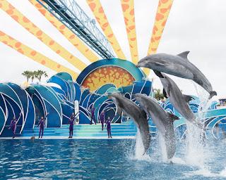 SeaWorld Dolphin Days Show de delfines