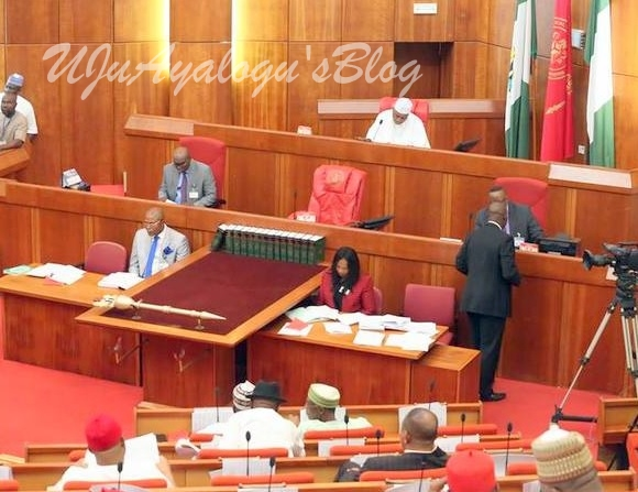 2018 budget: Drama as Minister fails to answer Senate's question on duplication of projects