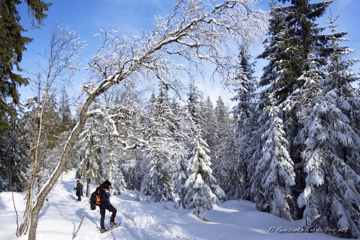 Ruta a Tryvannstua, invierno en Oslo por El Guisante Verde Project