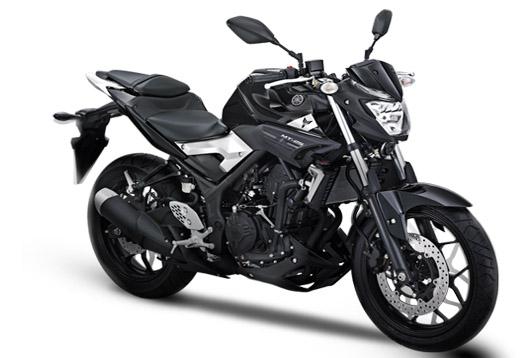 All New Yamaha MT-25