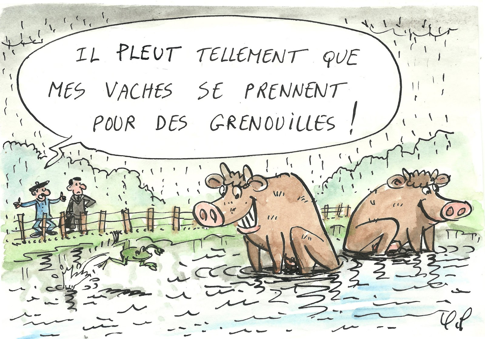 La mouche Ducoche: Il pleut comme vache qui pisse !
