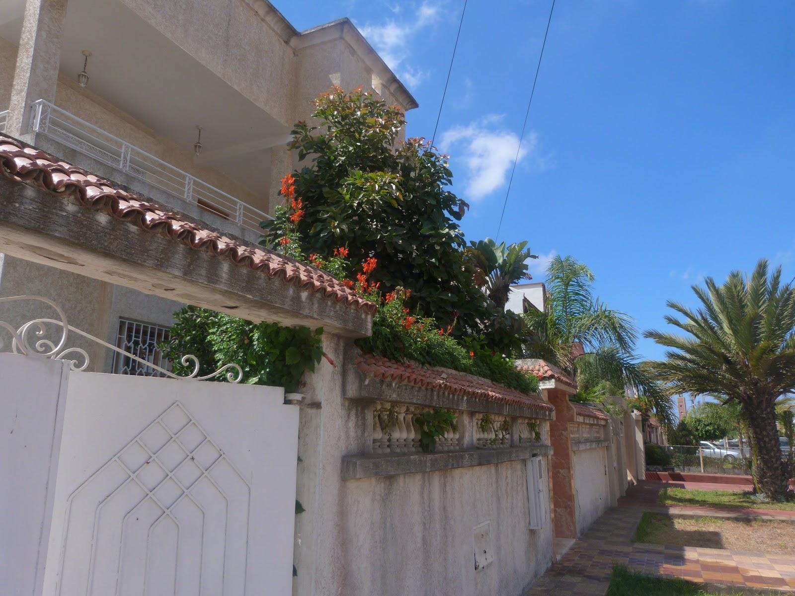 Agence Immobiliere Villa A Vendre Kenitra