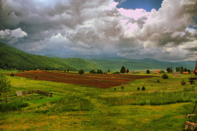 Поля и леса в Этно деревне