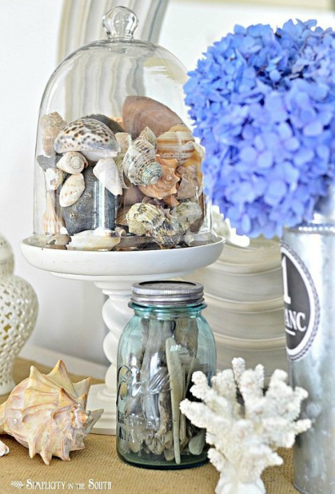 Glass Cloche on Pedestal with Shell
