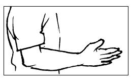 Soal Bahasa Inggris Kelas 3 SD Bab 1 Parts Of Body Dan Kunci Jawaban