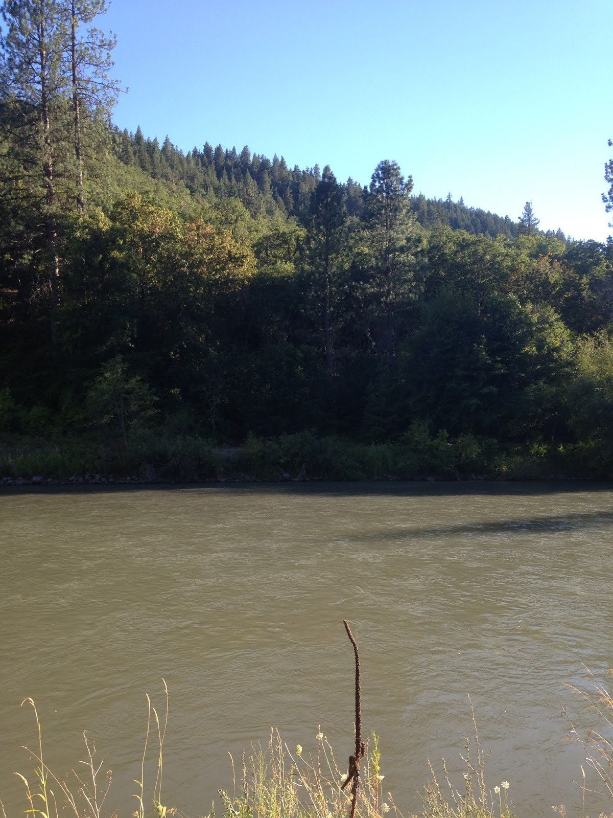 The evening hatch reports klickitat river report 8 2 16 for Klickitat river fishing report