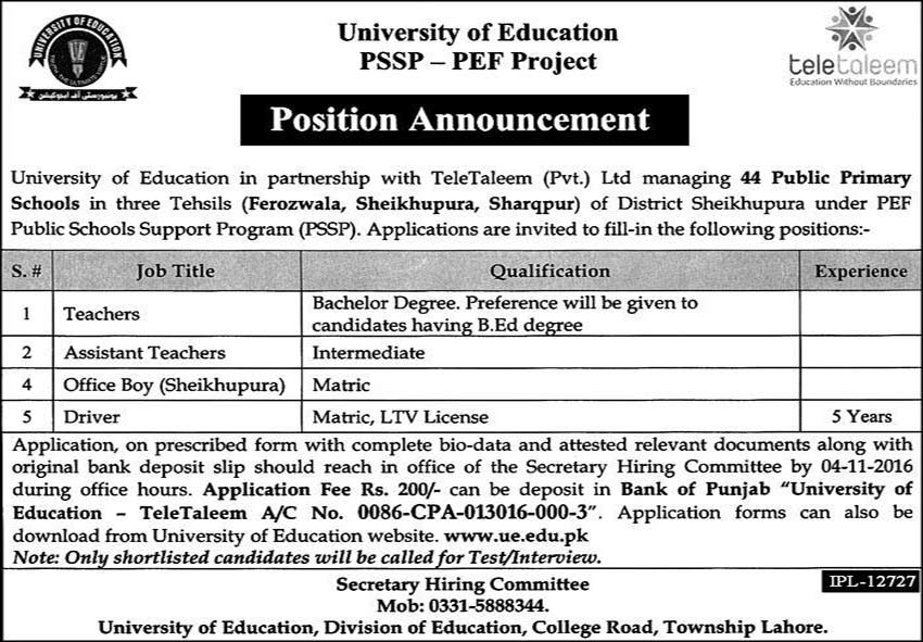 Teacher & Other Jobs in University of Education Lahore