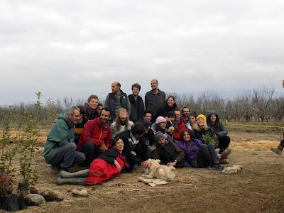 Δημιουργία βρώσιμου δάσους 2 στρεμμάτων με την μέθοδο της αεικαλλιέργειας και της συντροφικής γεωργίας