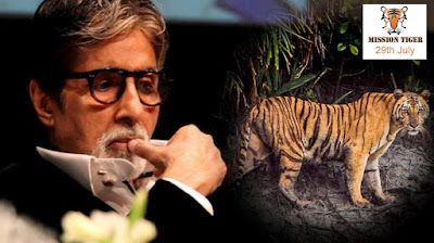 amitabh-bachchan-and-mission-tiger