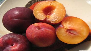 pluot fruit images wallpaper