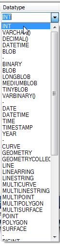 Columna Datatype