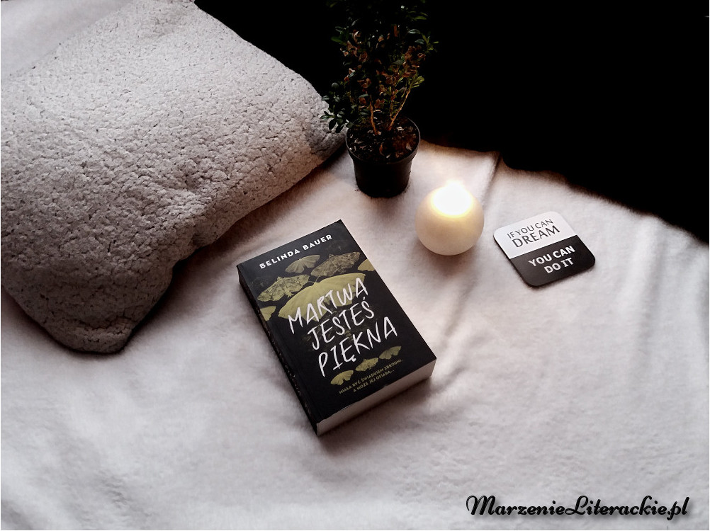 degustacja okładkowa, cykl książkowy, marzenie literackie