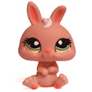 Littlest Pet Shop Pet Pairs Rabbit (#1094) Pet