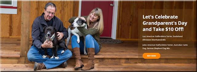 Wisdom Panel dog dna test coupon code discount grandparen't day