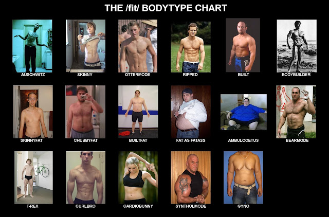 2019 Mens Bodytype Chart. StrengthFighter.com