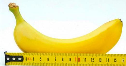 Quatre mythes au sujet du pénis