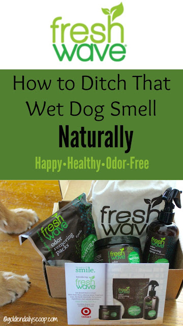 healthy pets, getting rid of wet dog smell naturally with Fresh Wave odor eliminator