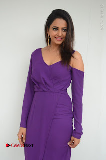 Actress Rakul Preet Singh Latest Stills in Beautiful Long Dress  0059.JPG