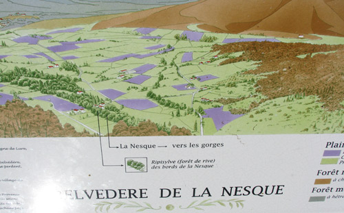 Map of the Lavender Fields in valley of River Nesque