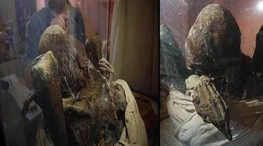 Momia secreta con cráneo elongado y dedos extraordinariamente largos descubierto en Perú