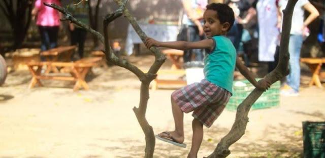 Brinquedos não estruturados estimulam a imaginação dos pequenos