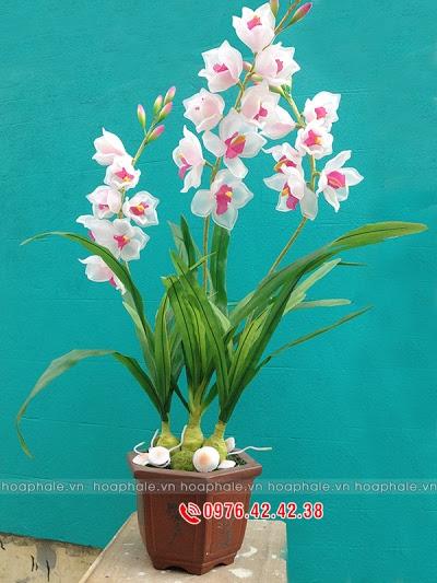 Hoa da pha le o Phuc Thọ