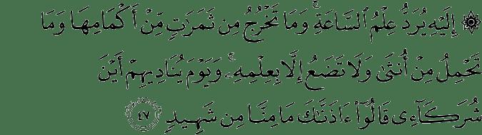 Surat Fushshilat ayat 47