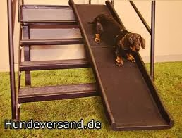 cães rampas externas