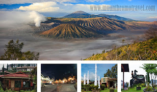 List Hotels in Bromo