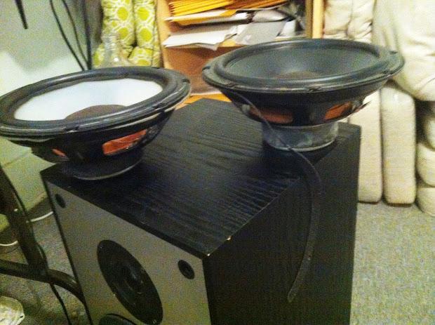 Speakerholic Paradigm 3se Mini Speakers - Year of Clean Water