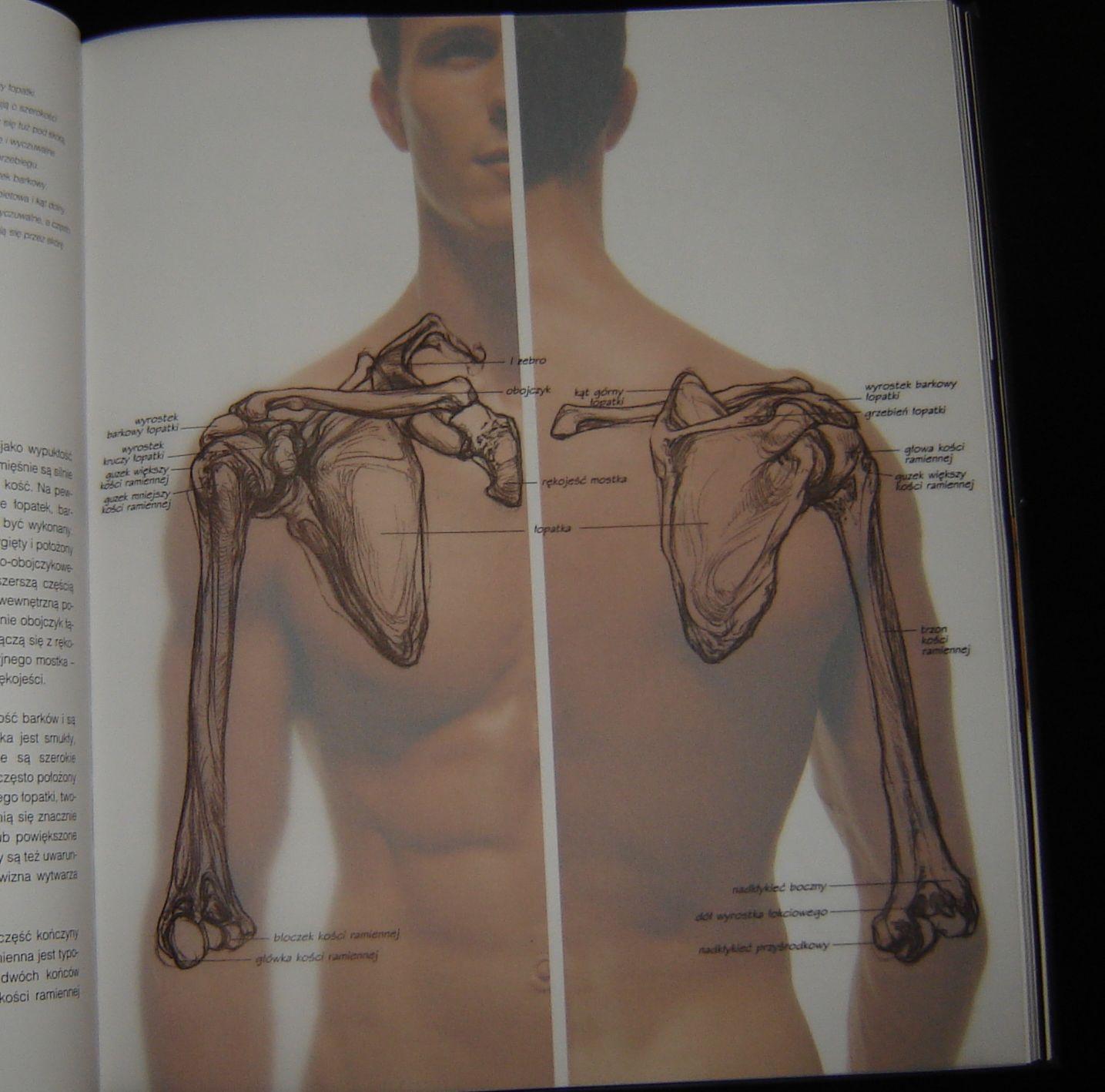 Ludzkie ciało \
