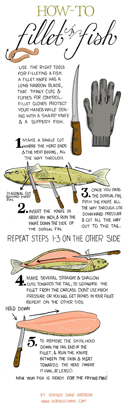 Infographic On How To Fillet A Fish