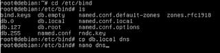 Cara Konfigurasi DNS Server Debian 8 (Jessie)