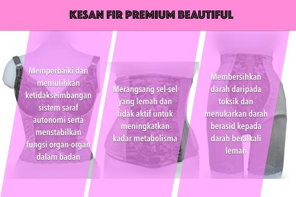 Premium Beautiful dan FIR kesannya kepada pengguna