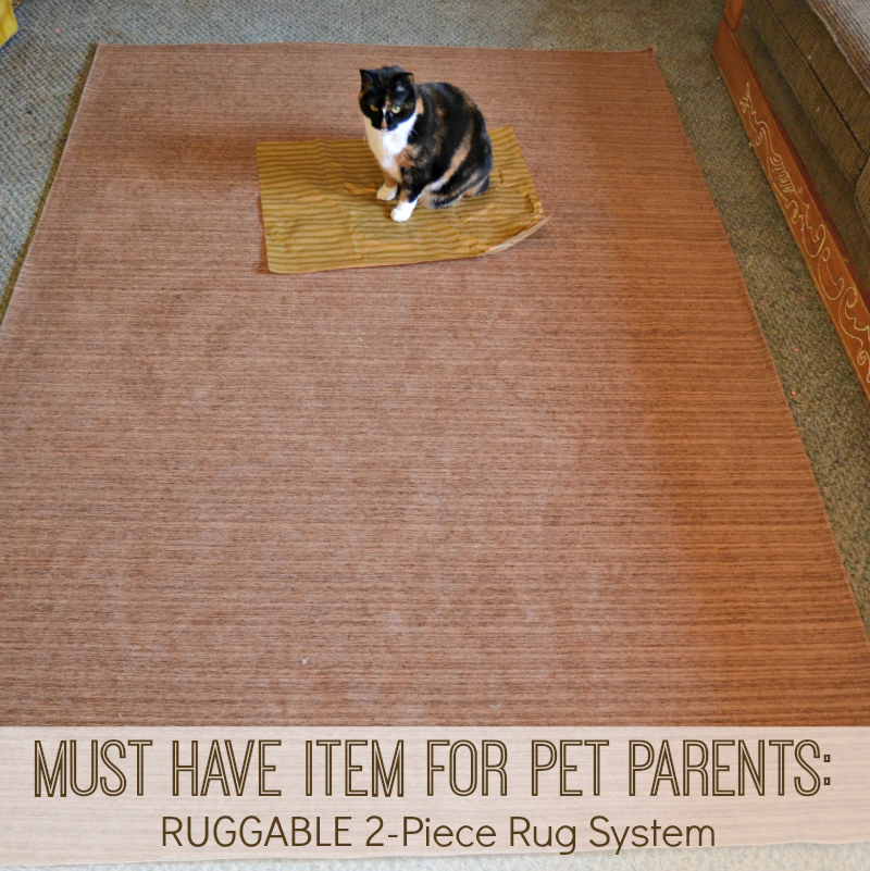 Must Have Item For Pet Parents Ruggable 174 2 Piece Rug