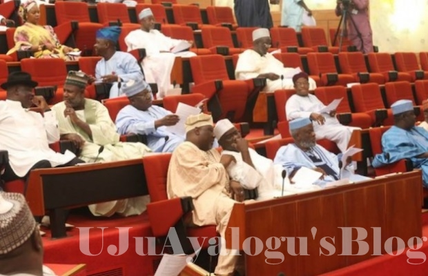 UPDATE: Senators ignore DIG Joshak, insist on IGP Idris