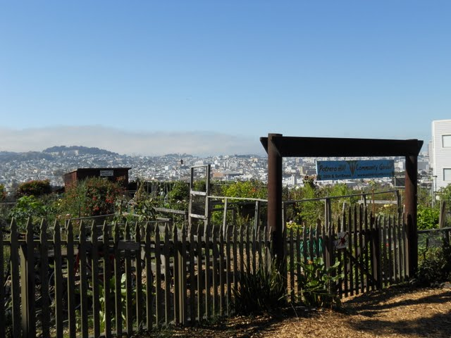 The Benches Community Garden in Potrero Hill