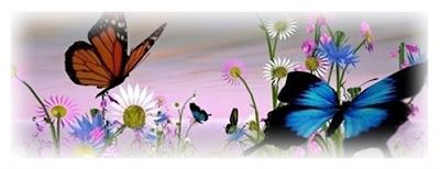 A metamorfose da borboleta e a transformação de renasce em Cristo