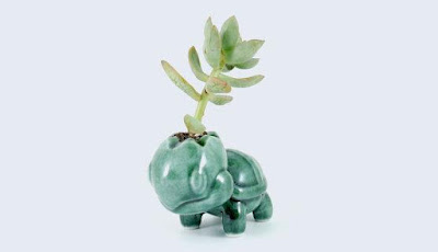Turtwig Ceramic Planter