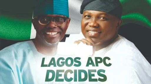 Confusion As Lagos APC Chairman Fights Abuja NWC Panel For Nullifying Election