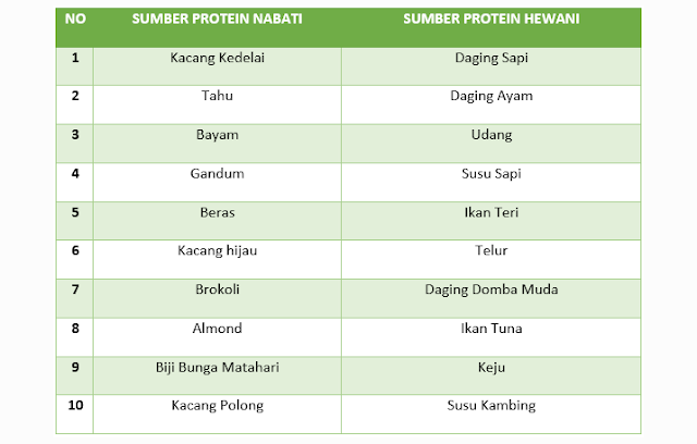 Makanan Sumber Protein Hewani, Makanan Sumber Protein Nabati