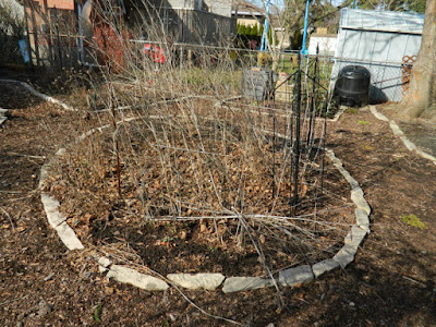 Toronto Etobicoke spring garden clean up before by Paul Jung Gardening Services