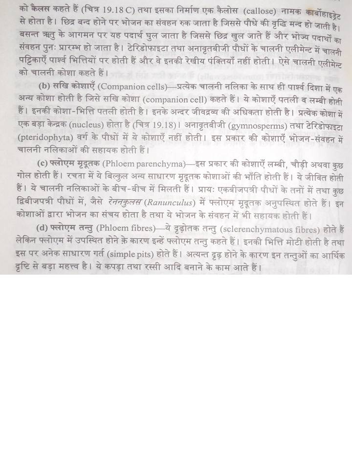 Sandeep Sir Biology: Anatomy of Flowering Plant 11 th Notes in Hindi ...