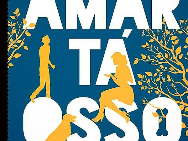 Resenha Nacional Amar Tá Osso - Vanessa Bosso