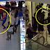 Video Suspek Cabul Wanita Dibelasah Sampai Koma
